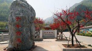 西安终南山里隐藏一座道观,韩国人常来