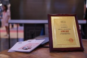 "CZEL绔姿彩妆:上海美博会上的""中国好品牌"""