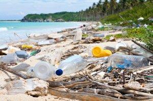 """如果""""一切照旧"""",到2050年海洋中的塑料将比鱼还多!"""